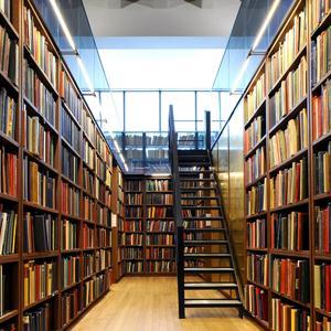 Библиотеки Кингисеппа