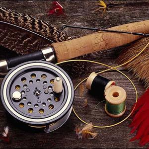 Охотничьи и рыболовные магазины Кингисеппа
